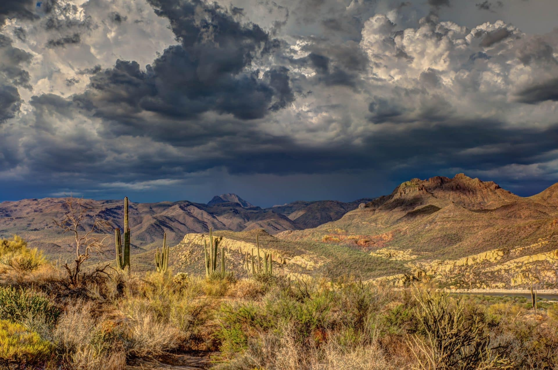 Desert with cactus and mountains underneath a cloudy sky in Tucson